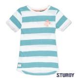 Sturdy Sturdy T-shirt streep pool party mint