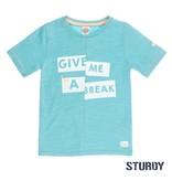 Sturdy Sturdy T-shirt give me a break pool party mint