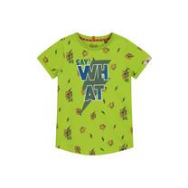 T-shirt Aiden fresh green tiger