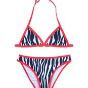 Claesen's bikini zebra