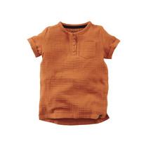 mini jongens T-shirt Snapdragon pecan pie
