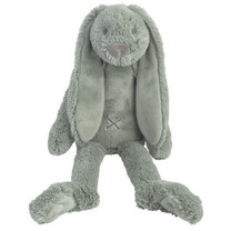 Green Rabbit Richie 38cm