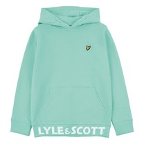 trui branded hoodie neptune green
