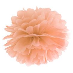 Pompom perzik 25 cm