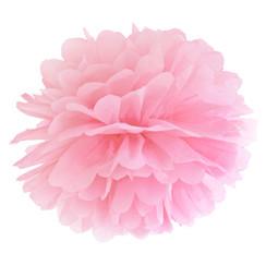 Pompom licht roze 25 cm