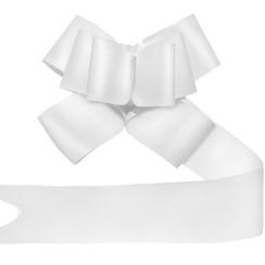 Strikjes wit 5 cm | 10 stuks
