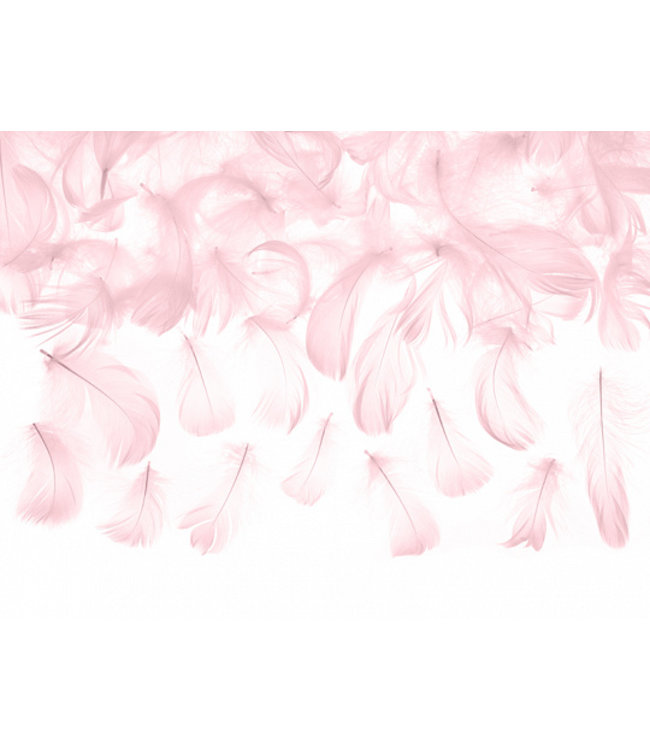 PartyDeco Roze decoratieve veren - 3 gram