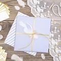 PartyDeco Witte decoratieve veren - 3 gram