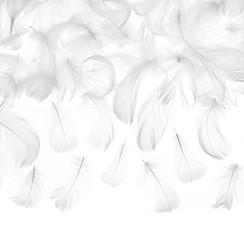 Witte decoratieve veren - 3 gram