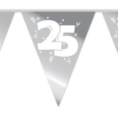 Vlaggenlijn 25 zilver - 10 meter