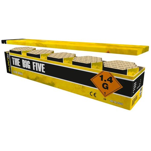 Burn It The Big Five – 5er Feuerwerksbatterieset - NEU 2018
