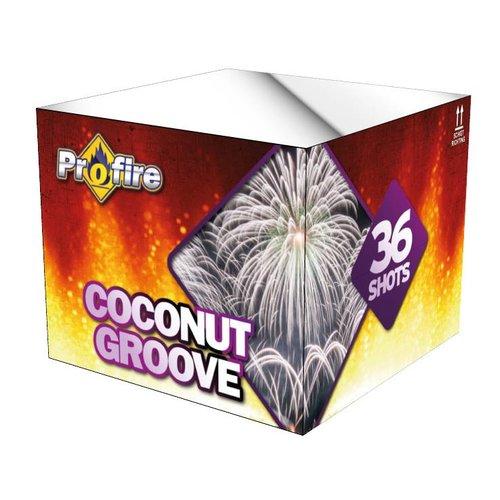 Evolution Coconut Groove