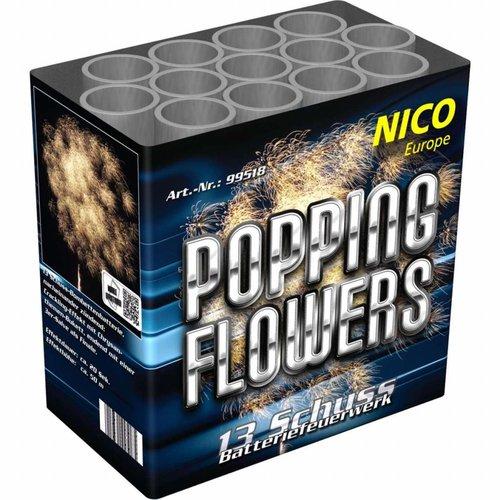 Nico Popping Flowers