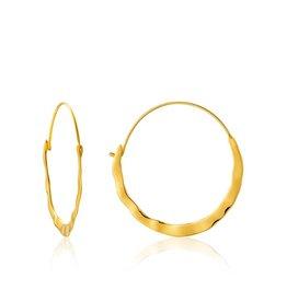 ANIA HAIE JEWELRY AH E017-07G oorbellen Crush Hoop Zilver Goldplated