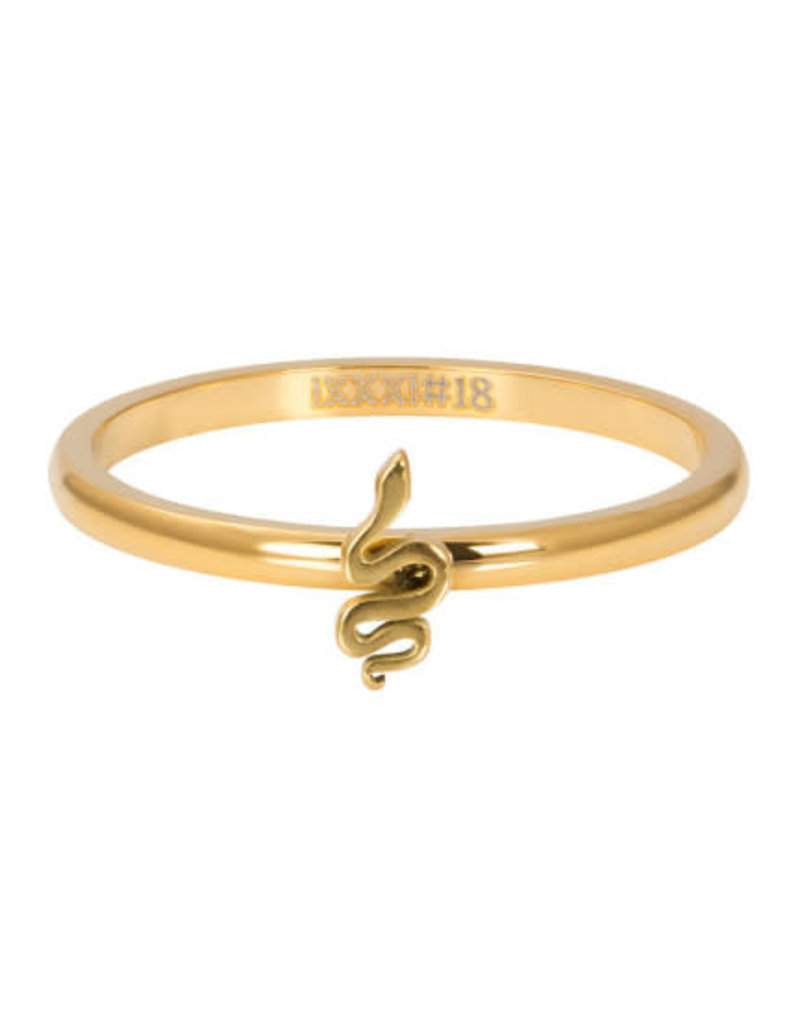 iXXXi iXXXi R03505-01 21 Ring Symbol Snake Goudkleurig Maat 21