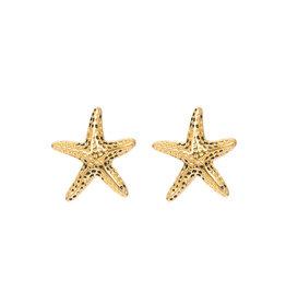 iXXXi iXXXi E0330199001 Oorbellen Goud Sea Star