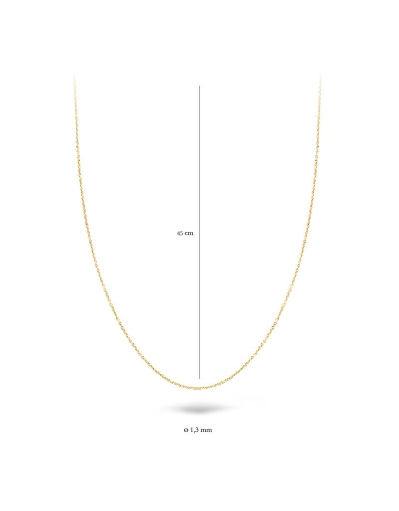 Blush 3010YGO/45 Collier 14 krt geelgoud 45 cm