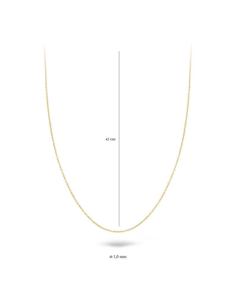 Blush 3046YGO/42 Collier 14 krt geelgoud 42 CM