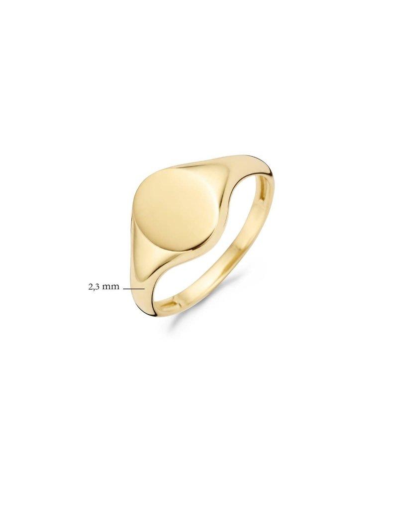 Blush 1190YGO/52 Ring 14 krt geelgoud maat 52