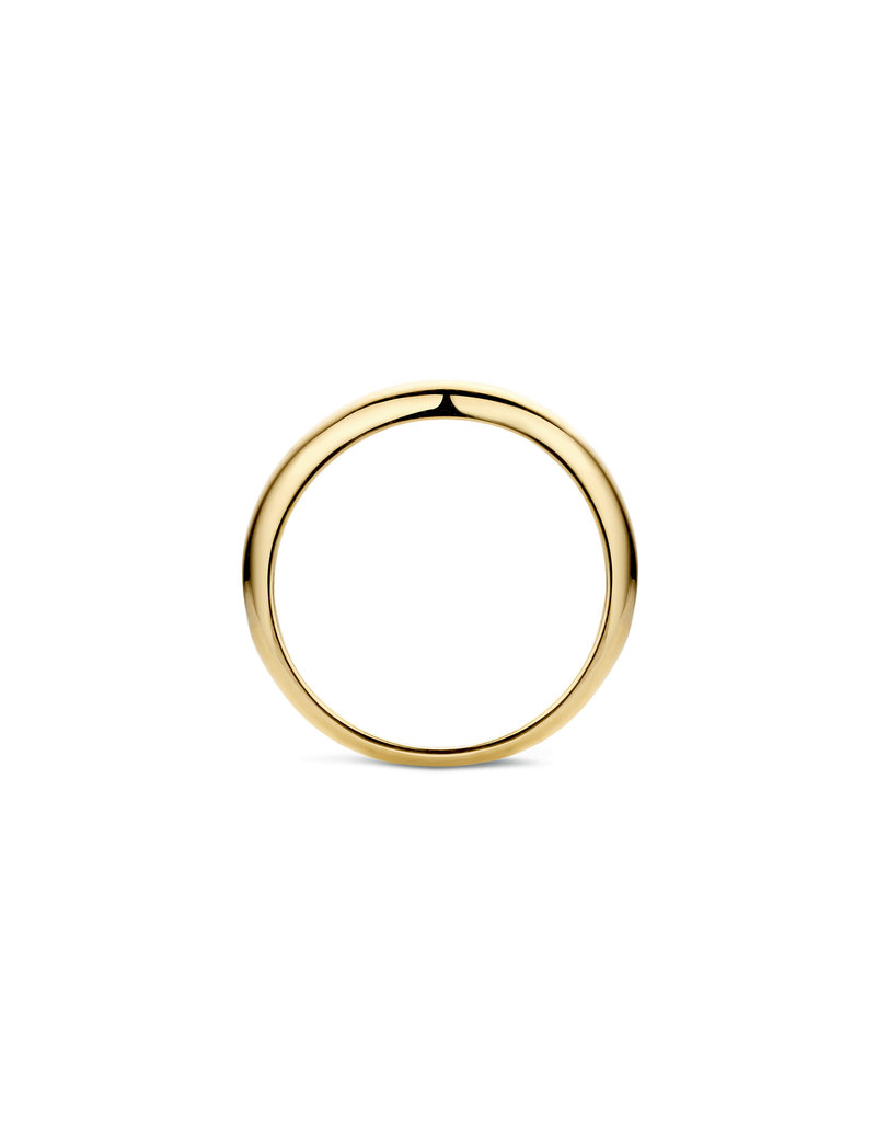 Blush 1207YGO/54 Ring 14 Krt Goud Mt 54