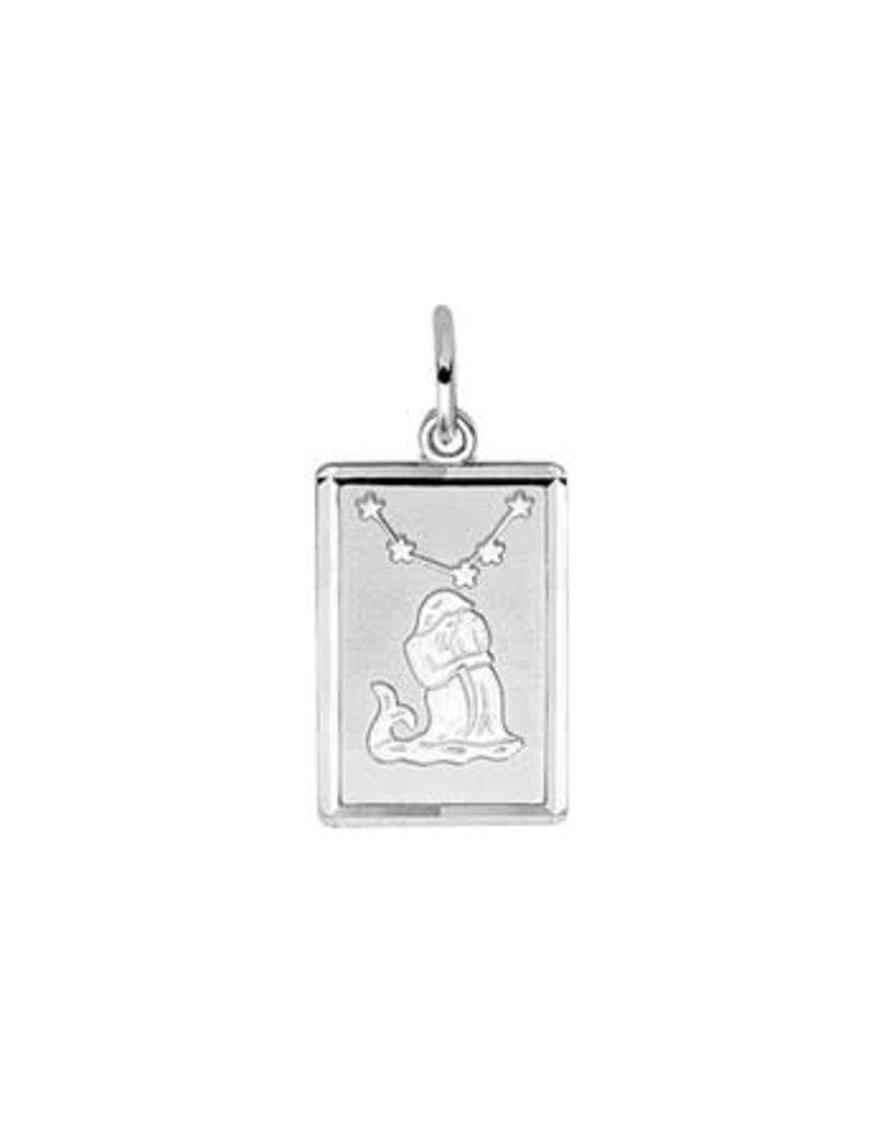 Blinckers Jewelry Huiscollectie 13.00144 Hanger Sterrenbeeld Waterman Gediamanteerd