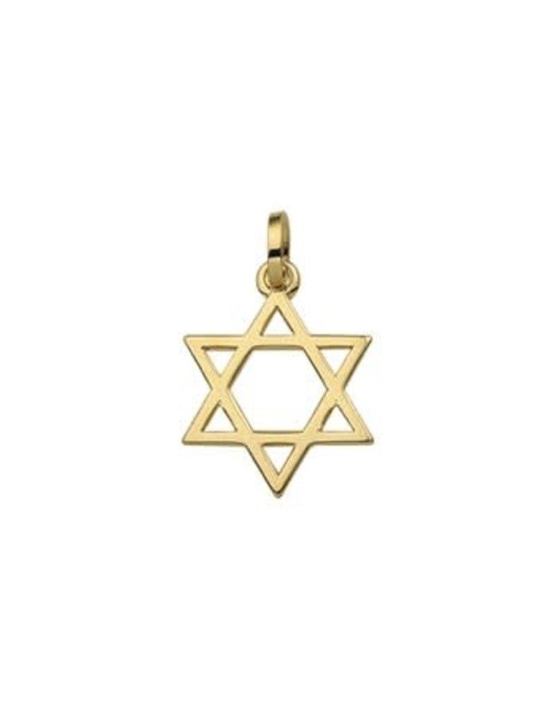Blinckers Jewelry Huiscollectie 40.01562  Bedel Davidster 14 Krt goud