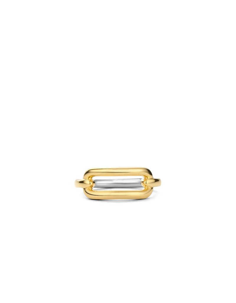 Ti Sento Milano 12229SY/54 Ring zilver geelgoud plated  link