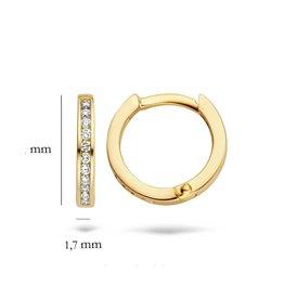 Blush Blush 7614YDI oorbellen creook 14 k geelgoud met diamant