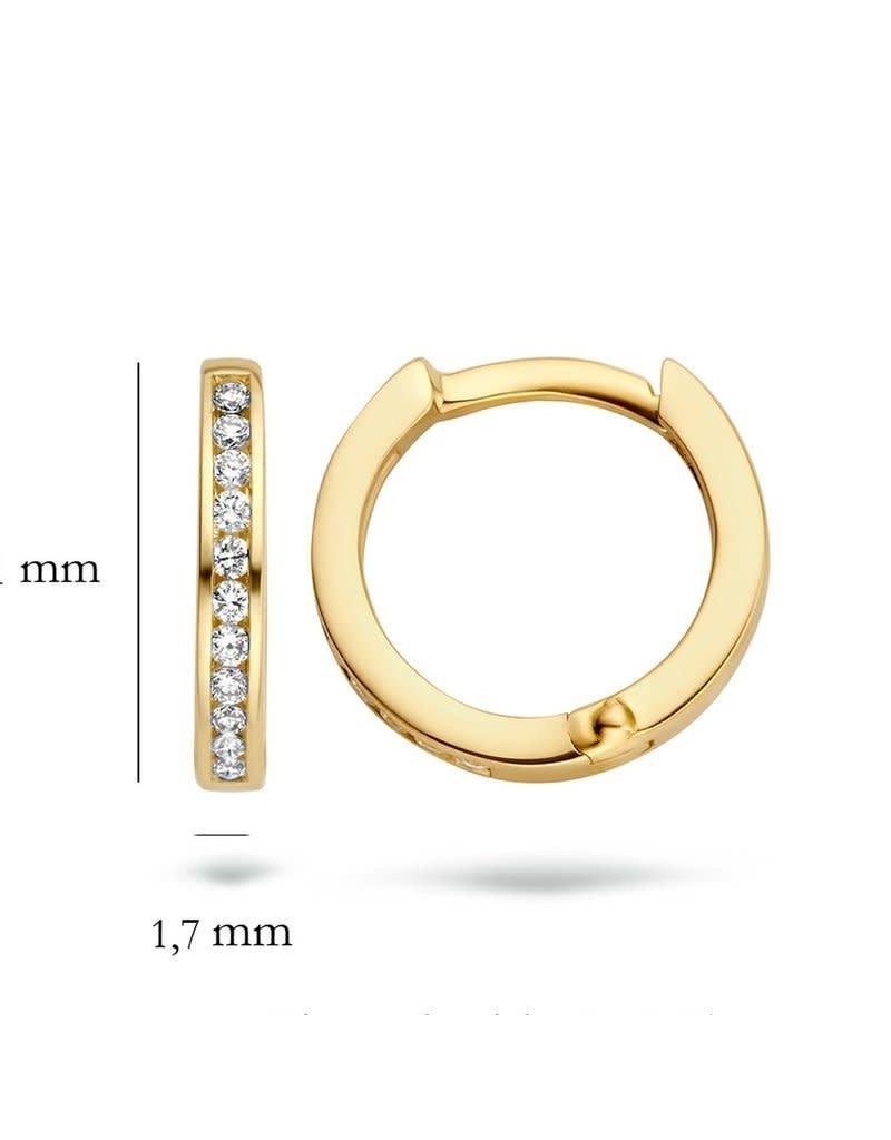 Blush Blush 7614YDI oorbellen creool 14 k geelgoud met diamant