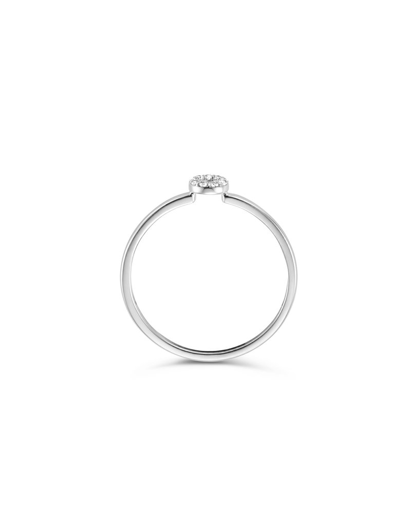 Blush Blush 1217WZI/52 ring 14k witgoud circel met zirkonia