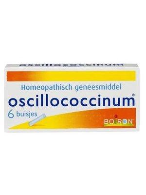 Oscillococcinum Oscillococcinum Korrels - 6 Buisjes