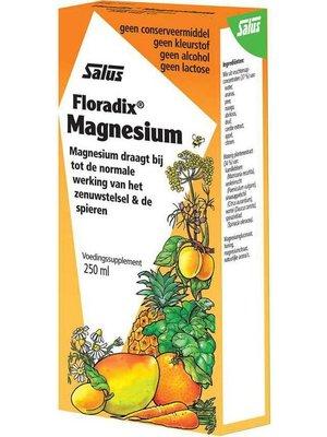 Floradix Floradix Magnesium - 250 Ml