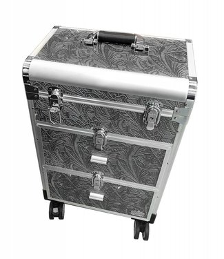 Magnetic Trolley