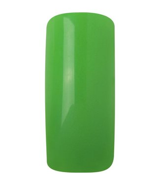 Magnetic Acryl poeder Neon Green 12 gr.
