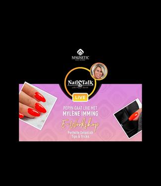 Magnetic Nail Design E-workshop Perfecte Gelpolish