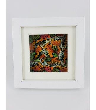 Urania Ripheus wings in frame