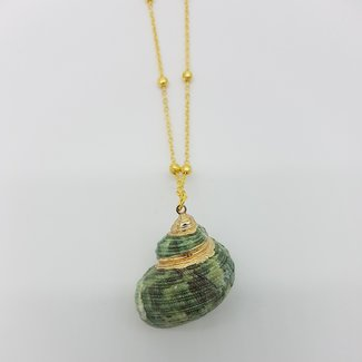Necklace with shell