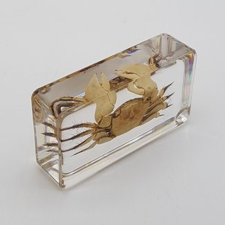 Crab in resin (7x4)