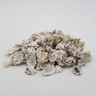 Mixes shells L