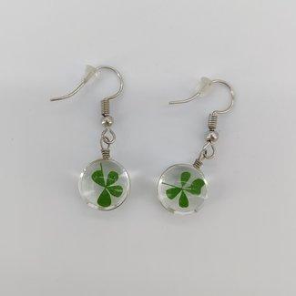 Earrings clover