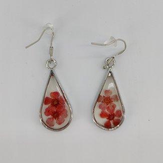 Earrings red dried flower