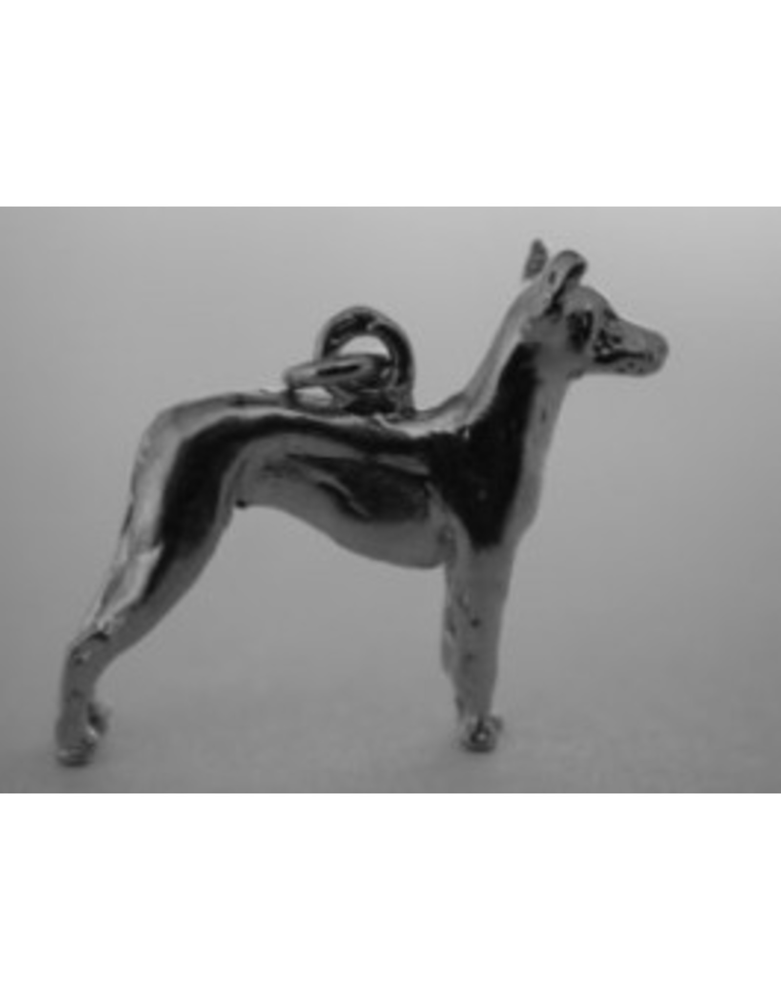 Handmade by Hanneke Weigel Zilveren Mexicaanse naakthond