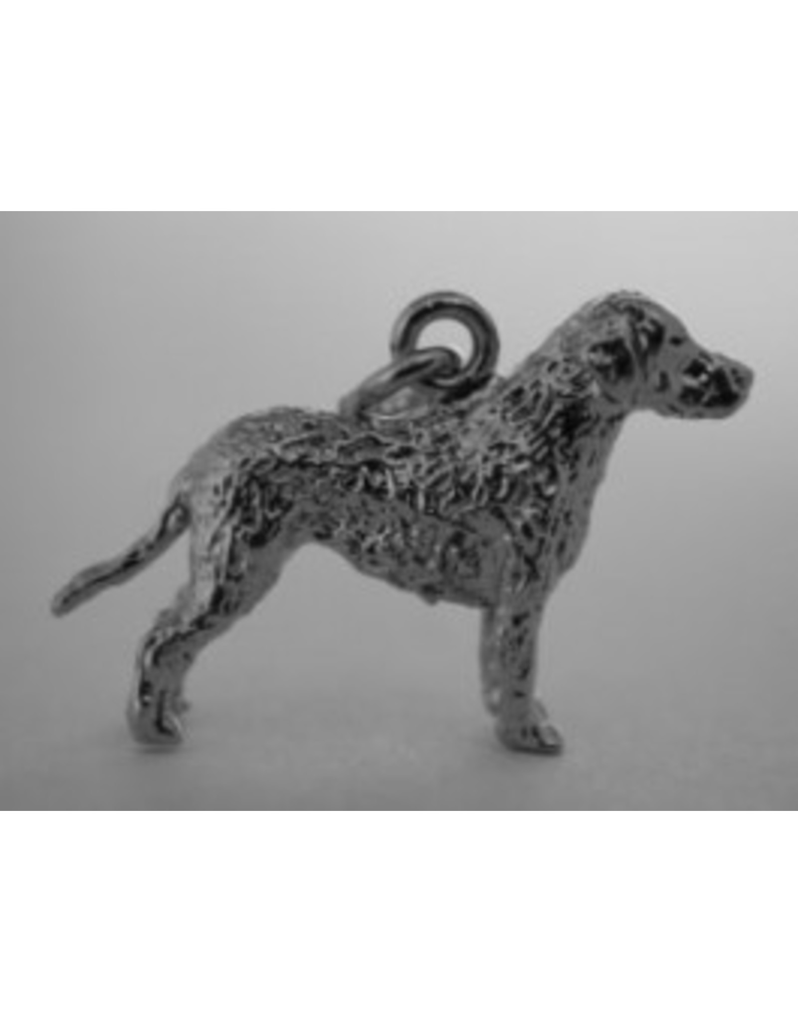 Handmade by Hanneke Weigel Zilveren Curly coated retriever