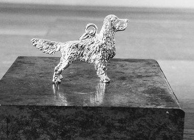 Jachthonden, Staande honden & setters