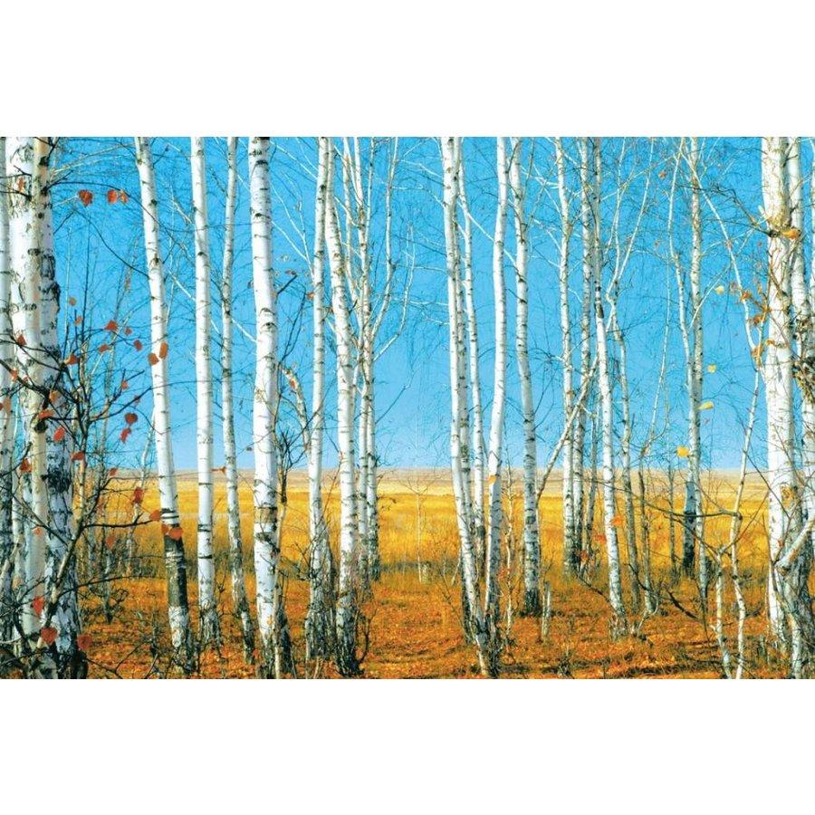 Glasschilderij berken 120 x 80 cm-1