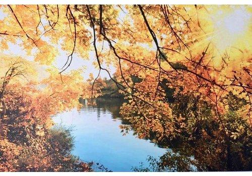 Aluminium schilderij Zon en bladeren 120x80 cm