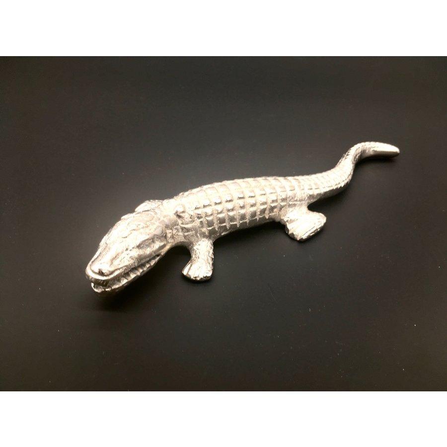 Krokodil nikkel (small)-4