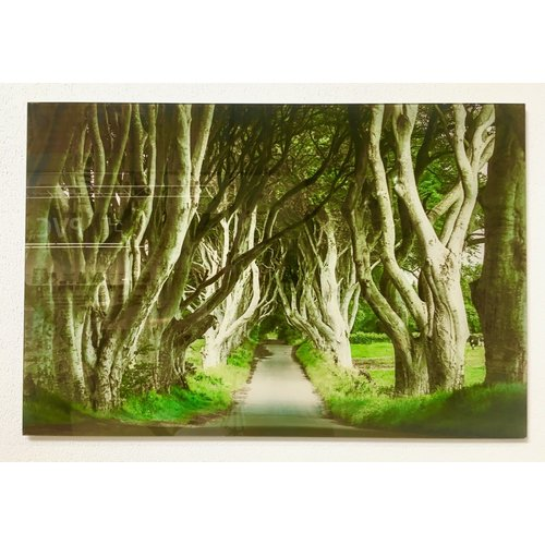 Glasschilderij bospad 90 x 60 cm