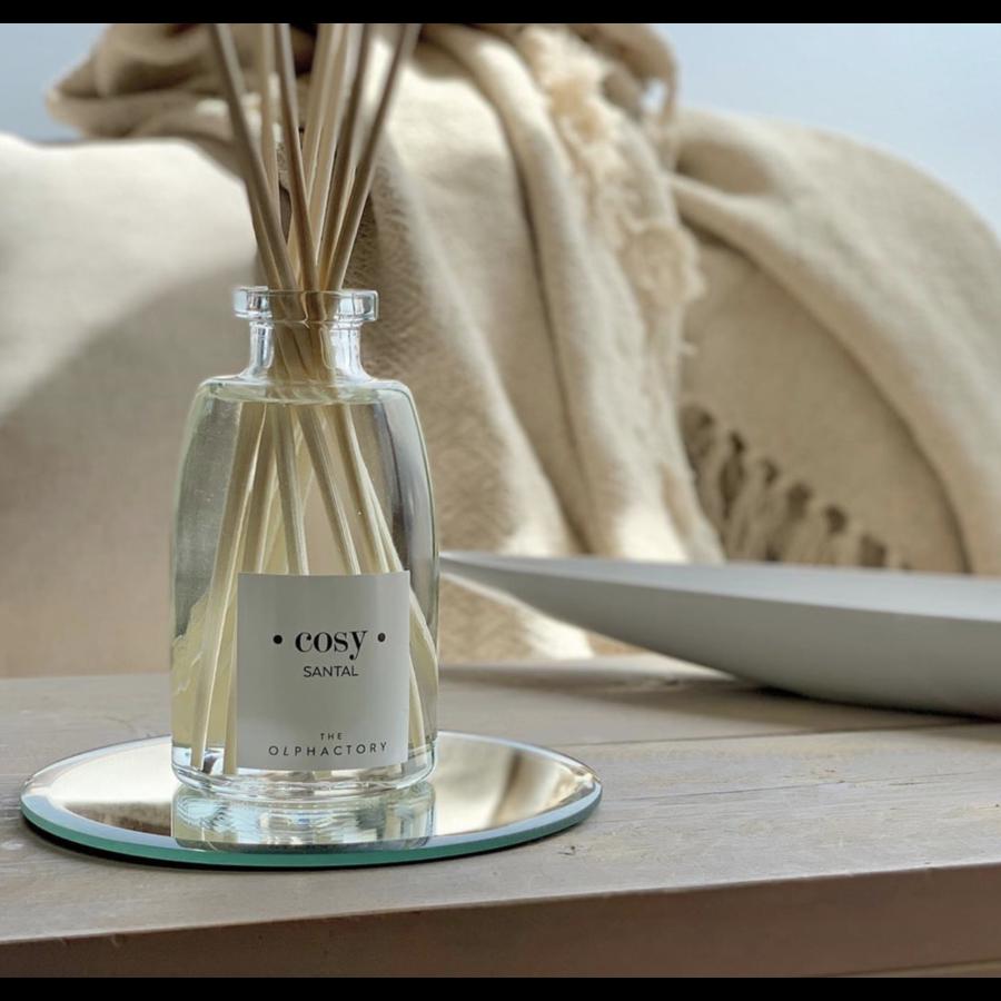 Fragrance Diffuser | interieur geurstokjes-7