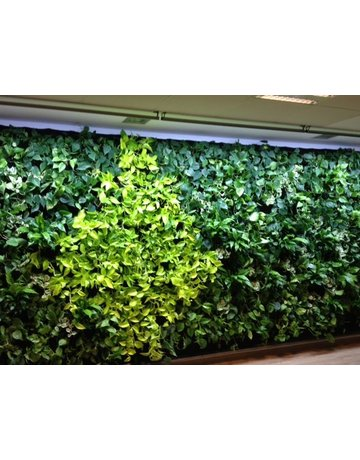 Parus Plant Light PASCAL Living Wall Linear